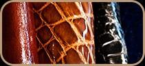 Aligator Skin samples